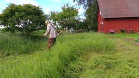 Man with trimmer cut high grass in rural homestead house yard. Shot on Canon XA25. Full HD 1080p. Progressive scan 25fps. Tripod stock video