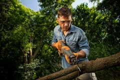 Man Trimming Branches. Off a tree that has fallen in his back yard Stock Photos