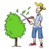 Man trimming bush Stock Image