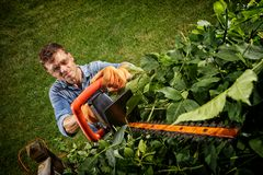 Man trimming bushes Royalty Free Stock Image