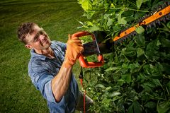 Man trimming bushes royalty free stock photo