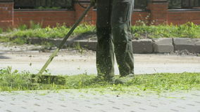 Man trimming grass in a garden using a lawnmower stock video