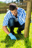 Man trimming grass home Royalty Free Stock Photos