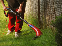 Man trimming grass on lawn Royalty Free Stock Images