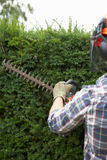 Man trimming hedge Stock Photos