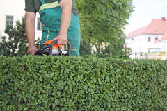 Man trimming hedge_2 Royalty Free Stock Photos