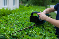 Man trimming a hedge next to a house royalty free stock image