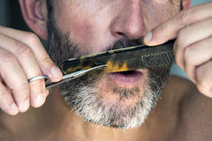 Man trimming his beard Stock Images