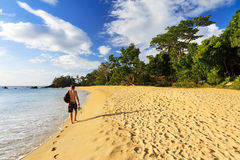 Man on a tropical beach Stock Images