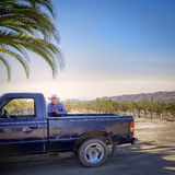 Man, Truck, Wine Country, Baja, Mexico stock image