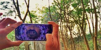 Mobile click. A man trying to click snap of forest by his mobile phone stock images