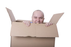 Man trying to escape from a cardboard box Royalty Free Stock Photo
