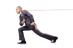 Man in tug of war concept. On white Stock Photo