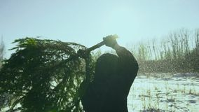 A man twists a felled tree and dances with it on a winter field against the background of the sun, the concept of the. New Year and Christmas. The concept of stock video footage