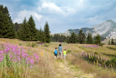 A man and two boys are walking on path in mountains Stock Photography