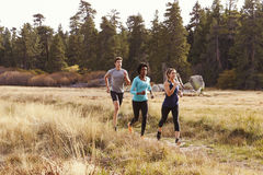 Man and two women running near a forest royalty free stock image