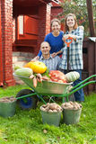 Man and two women with  vegetables in garden Stock Photos
