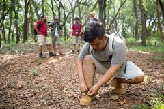Man hiker tying his shoes. Man tying his shoes while hiking in the forest Stock Photo