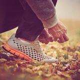 Man tying shoelaces. Closeup of man tying shoelaces on autumn grass in park. image with vintage toning Stock Image