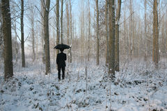 Man with umbrella. Standing in winter forest Stock Photography