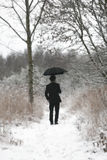 Man with umbrella. Picture of man with umbrella standing in winter forest with style effect Royalty Free Stock Images