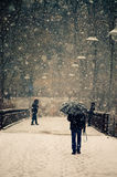 Man with umbrella. Walks in winter time Stock Image
