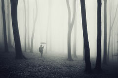 Man with umbrella walking in dark forest with fog Royalty Free Stock Photo