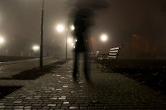 Man with umbrella walking in the night park Stock Image