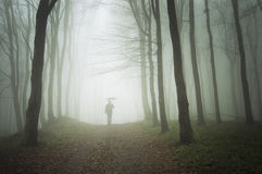 Man with umbrella walking to light in a misty fore. A man with an umbrella walking trough a foggy mysterious forest in a rainy day, heading to the light Stock Photos