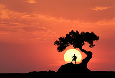 Man under the old tree on the background of yellow sun. Silhouette of a standing sporty man on the mountain and colorful orange sky with clouds at sunset Royalty Free Stock Photos