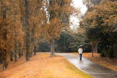 Man under the rain. Man walking under the rain in the park Stock Photos