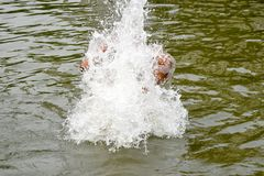 Man under the water drops - stock photograph stock images