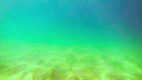 Man under water over a sandy bottom of the sea stock footage