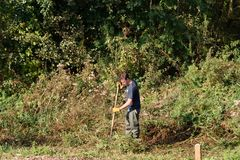 Man undertaking conservation work alongside River Yare Stock Image