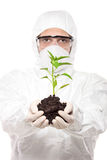 A man in uniform holding a peper plant Royalty Free Stock Photos