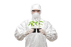 A man in uniform holding plants Royalty Free Stock Image
