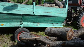 Man unload wood trailer. Workers unload tree wood logs for firewood from tractor trailer stock video footage