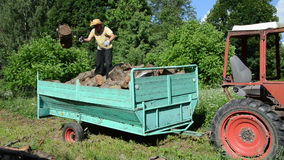 Man unload wood trailer. Young strong worker man unload tree logs for firewood wood from tractor trailer stock footage