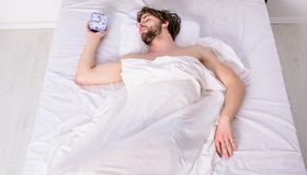 Man unshaven relaxing bed hold alarm clock. Man sleepy drowsy unshaven bearded face covered with blanket having rest. Guy lay under white bedclothes. Fresh stock photography