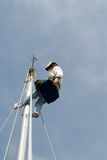 Man up the mast Stock Photo