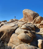 Man up on Rocky Mountain in the Desert. A man standing up on top of a rocky hill out in the desert. Arms up in praise or joy Stock Images