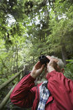 Man Using Binoculars In Forest Royalty Free Stock Photos