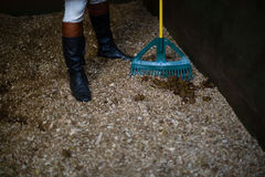 Man using broom to clean the stable. Low-section of man using broom to clean the stable Stock Images