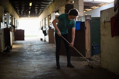 Man using broom to clean the stable. Young man using broom to clean the stable Royalty Free Stock Image