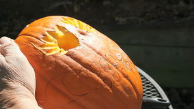 Man using carving tool on Halloween pumpkin stock footage