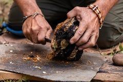 Free Man Using Chaga Mushroom To Keep Fire Alive Stock Images - 171177794