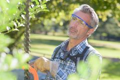 Man using hedge trimmer Stock Photos