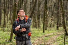 Free Man Using Hiking Sticks Poles Outdoors In Woods. Stock Photo - 74550870