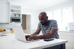 Man using laptop in kitchen Royalty Free Stock Photos