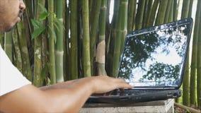 Man using laptop under bamboo tree. Asian man using laptop under bamboo tree stock footage